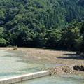 写真: 三方五湖の水害2