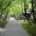 Photos: 京都 天竜寺界隈
