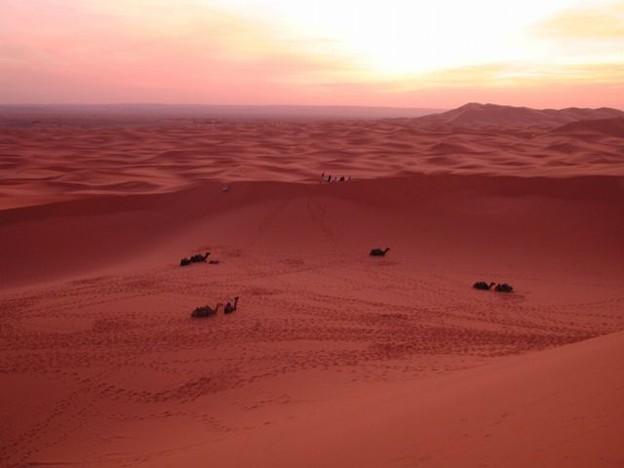 SunriseGlowサハラ砂漠Morocco#1