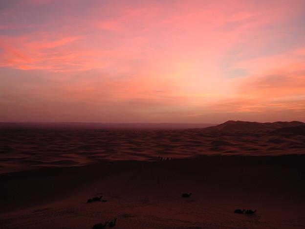 SunriseGlowサハラ砂漠Morocco#3