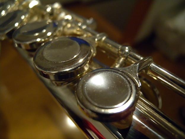 楽器のフォルム#6