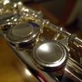 Photos: 楽器のフォルム#6