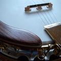Photos: 楽器のフォルム#10
