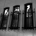Photos: 窓窓窓