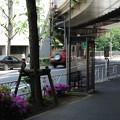 写真: 20110508_[秒速5センチメートル]参宮橋_005