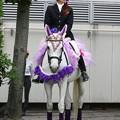 写真: 川崎競馬の誘導馬06月開催 あやめVer-120611-07-large