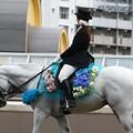 写真: 川崎競馬の誘導馬06月開催 紫陽花Ver-120611-05-large