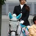 写真: 川崎競馬の誘導馬06月開催 紫陽花Ver-120613-06-large