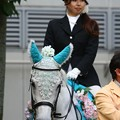 川崎競馬の誘導馬06月開催 紫陽花Ver-120613-06-large