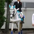 写真: 川崎競馬の誘導馬06月開催 紫陽花Ver-120613-07-large