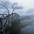 写真: 霧の榛名湖湖畔_edited-blue