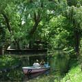 写真: 常盤公園、千鳥ケ池