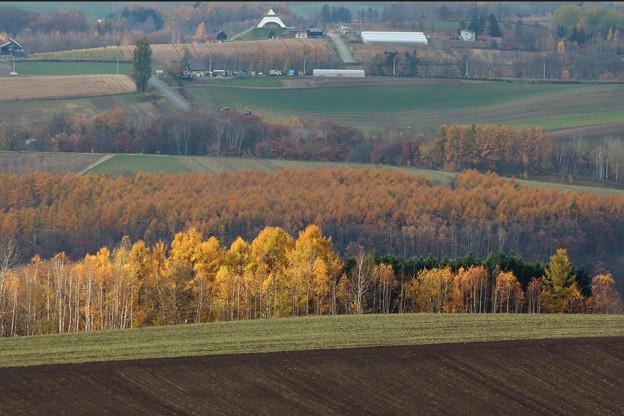 就実の丘の南に、北西の丘が!