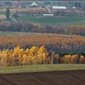 Photos: 就実の丘の南に、北西の丘が!