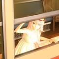 Photos: 【0074】[Music]歌に形はないけれど [Module]シフォンワンピース