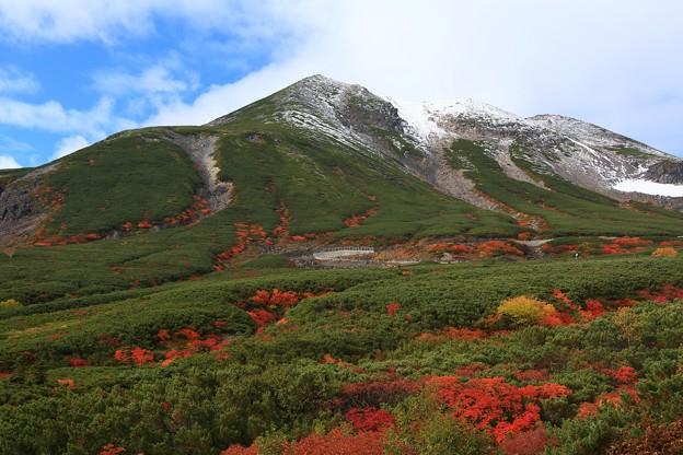 冠雪と空と紅葉