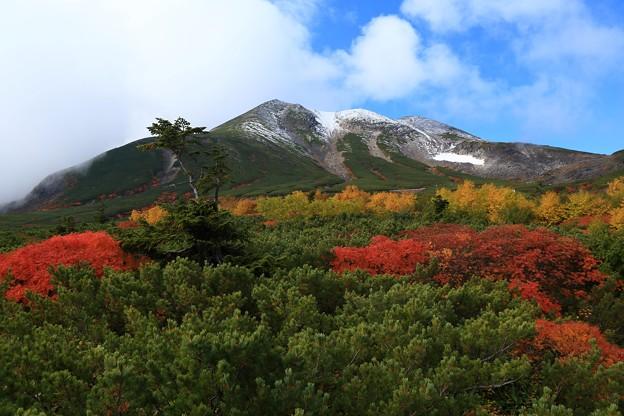 冠雪と紅葉3