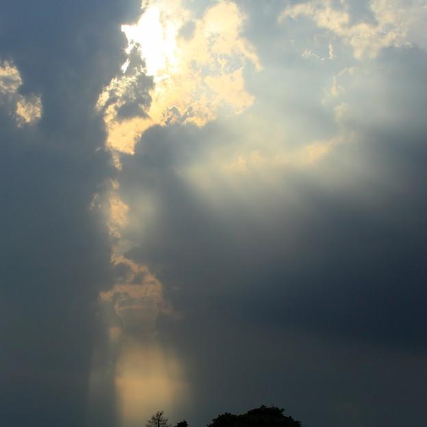 天使の梯子22