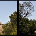 Photos: 3d_クリスタル迷宮
