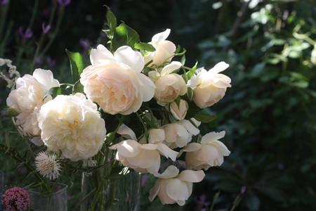 524 リッチフィールド・エンジェルの花束 (1)