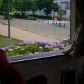 Photos: ロンちゃんの車窓から