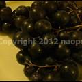 Photos: P3260577