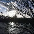 Photos: P3350051