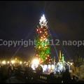 Photos: P3370272