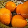 Photos: P3390693