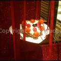 Photos: P3410899