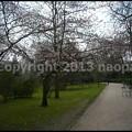 Photos: P3440957