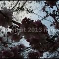 Photos: P3440963