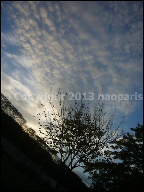 写真: P3310956