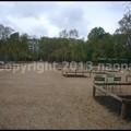 写真: P3480489