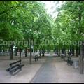 写真: P3480512