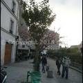 Photos: P3480803