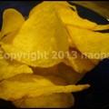 写真: P3480841