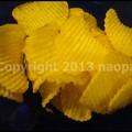 写真: P3480960