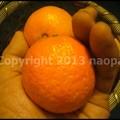 Photos: P3690348
