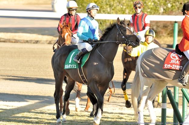 [京成杯2014]返し馬のホルボッシュ&北村宏。ちなみにこの勝負服は俺のダビスタ&ウイポの勝負服ですw