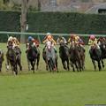 Photos: [070311中山11R中山牝馬S]ヤマニンメルベイユが引っ張ったまま直線へ。キープクワイエット、マドモアゼルドパリが粘る