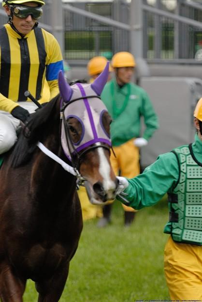 Photos: [070311中山11R中山牝馬S]反抗してそうなアクロスザヘイブン