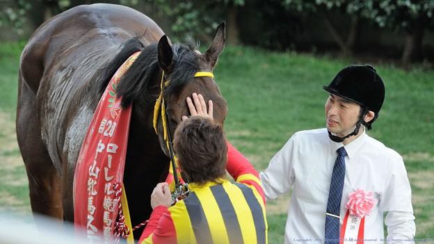 [140316中山11R中山牝馬S]学にペタペタされて嬉しそうなフーラブライド