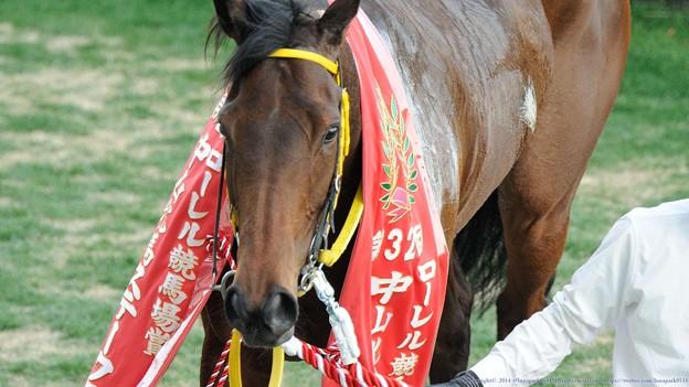 [140316中山11R中山牝馬S]フーラブライド「相変わらず馬券ヘタね」(妄想)
