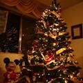 Aunt Darlene's Christmas Tree