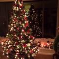 Grandma's Christmas Tree♪