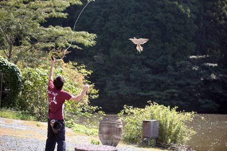 H25.9 掛川花鳥園 23