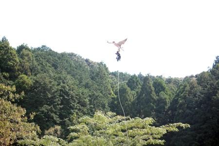 H25.9 掛川花鳥園 25
