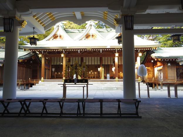 西宮神社 拝殿から本殿を望む