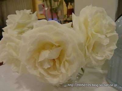 Photos: DSC01066